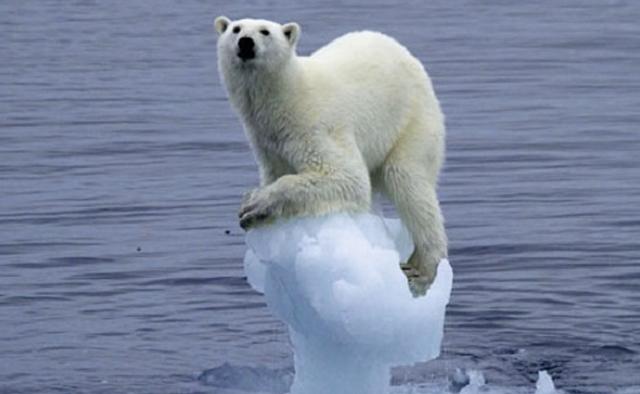 Il clima non scalda ma l'Ambiente siamo Noi